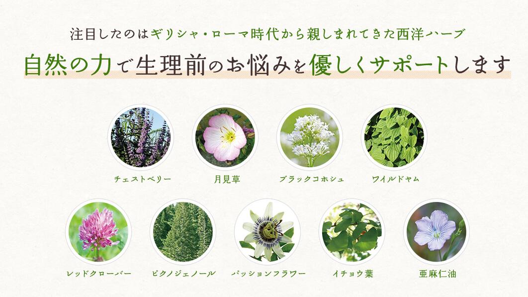 PMSサプリ【ルナベリー】に配合されている、9種類のハーブ