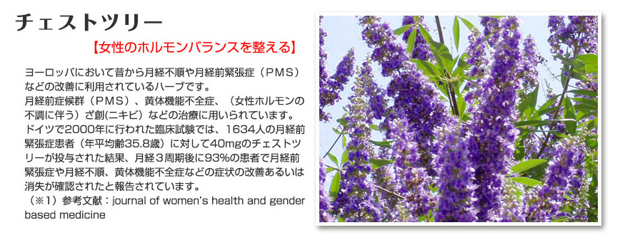 PMSに効果のある、チェストツリー(チェストベリー)