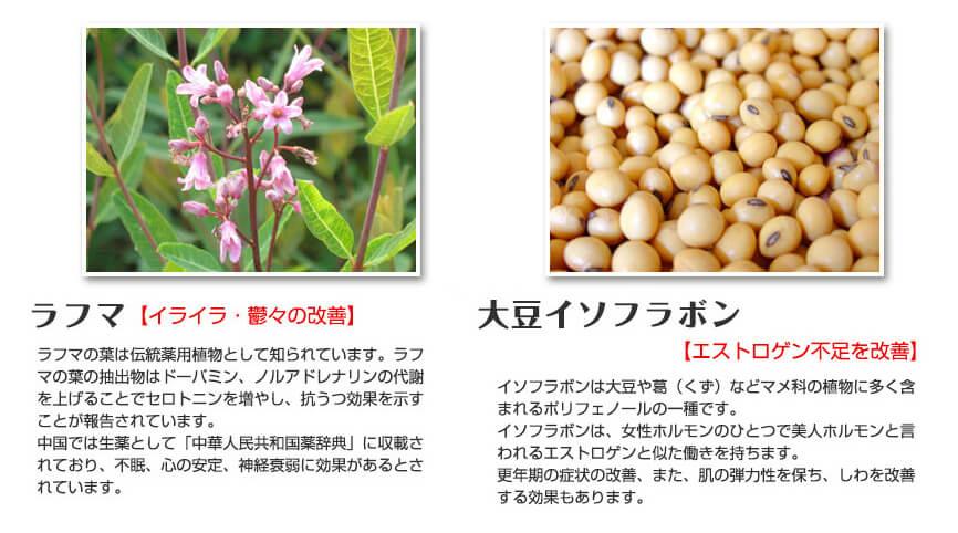 ラフマ葉と大豆イソフラボン